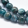 Natural Apatite Beads X-G-E481-05-8mm-3